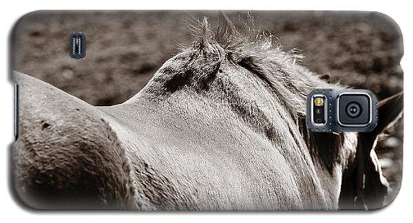 Galaxy S5 Case featuring the photograph Bareback by Angela Rath