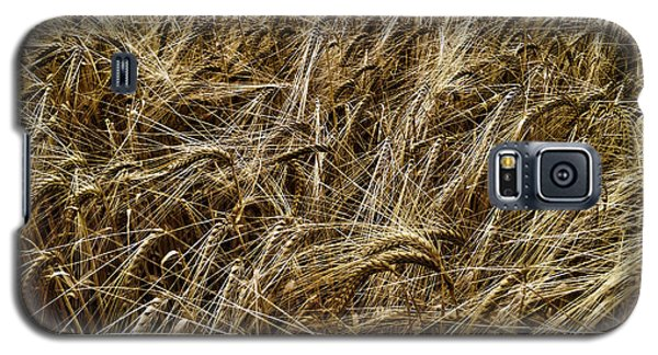 Galaxy S5 Case featuring the photograph Barley by RKAB Works