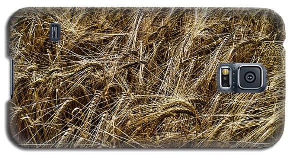 Barley Galaxy S5 Case