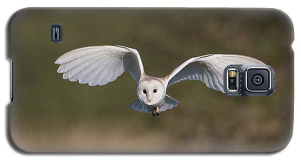 Barn Owl Approaching Galaxy S5 Case