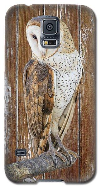 Barn Owl Artistic Portrait Galaxy S5 Case