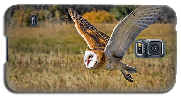 Barn Owl Flight 6 Galaxy S5 Case