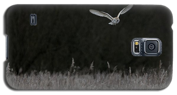 Barn Owl Hunting At Dusk Galaxy S5 Case