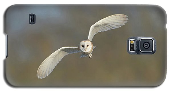 Barn Owl Hunting In Worcestershire Galaxy S5 Case