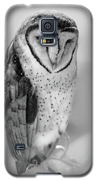 Barn Owl II Galaxy S5 Case