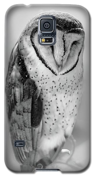 Barn Owl II Galaxy S5 Case