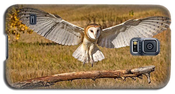 Barn Owl Landing Galaxy S5 Case