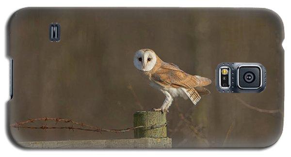 Barn Owl On Fence Galaxy S5 Case