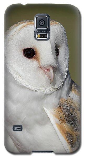 Barn Owl Portrait - Winged Ambassadors Galaxy S5 Case