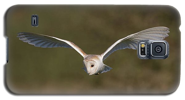 Barn Owl Quartering Galaxy S5 Case