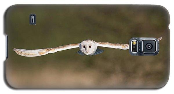 Barn Owl Wingspan Galaxy S5 Case