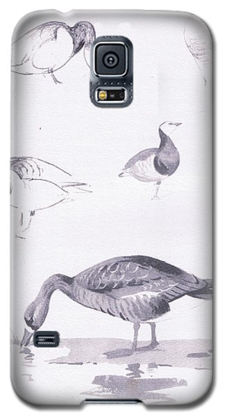 Barnacle And White Fronted Geese Galaxy S5 Case