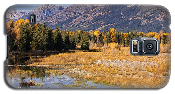 Bull In The Beaver Ponds Galaxy S5 Case by Aaron Whittemore