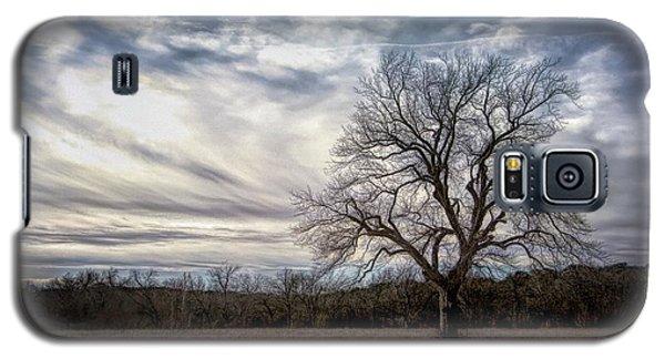 Baron Tree Of Winter Galaxy S5 Case