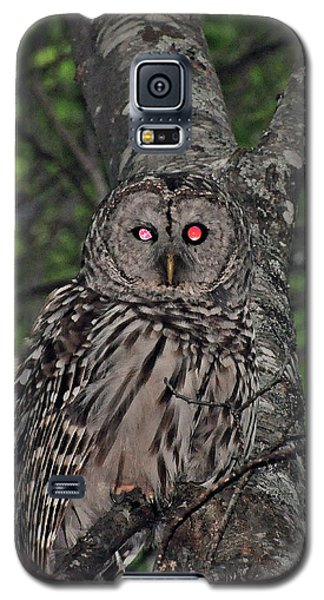 Galaxy S5 Case featuring the photograph Barred Owl 3 by Glenn Gordon