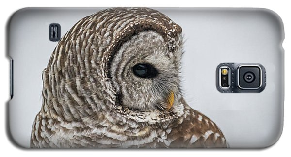 Galaxy S5 Case featuring the photograph Barred Owl Portrait by Paul Freidlund