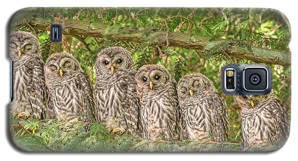 Barred Owlets Nursery Galaxy S5 Case