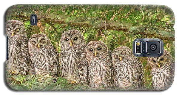 Barred Owlets Nursery Galaxy S5 Case