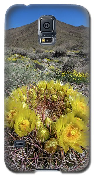 Galaxy S5 Case featuring the photograph Barrel Cactus Super Bloom by Peter Tellone