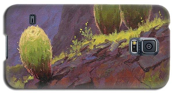 Grand Canyon Galaxy S5 Case - Barrels by Cody DeLong