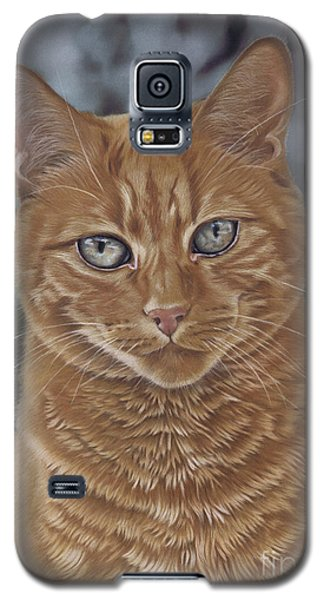 Barry The Cat Galaxy S5 Case