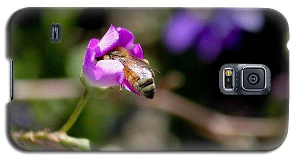Bashful Bee  Galaxy S5 Case