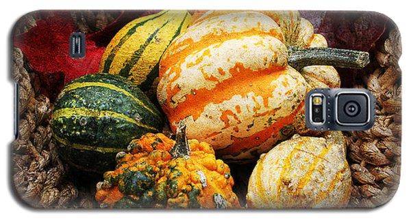 Basket Of Pumpkins Galaxy S5 Case