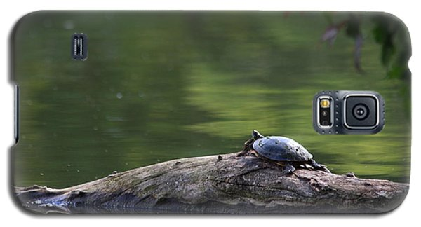 Galaxy S5 Case featuring the photograph Basking Turtle by Lyle Hatch