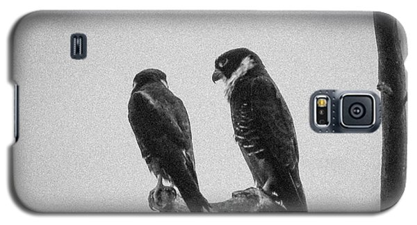 Bat Falcon In Black And White Galaxy S5 Case