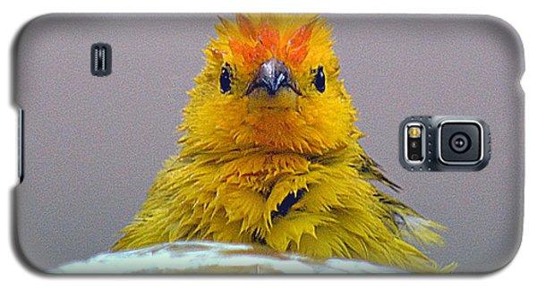 Galaxy S5 Case featuring the photograph Bath Time Finch by Lori Seaman