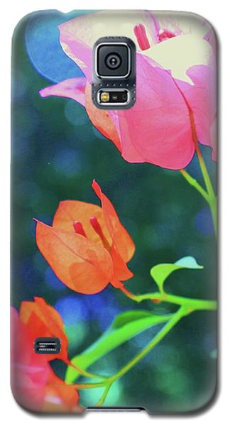 Galaxy S5 Case featuring the photograph Bathed In Sunlight by Diane Miller