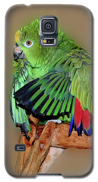 Bathing Beauty Amazon Galaxy S5 Case by Smilin Eyes  Treasures