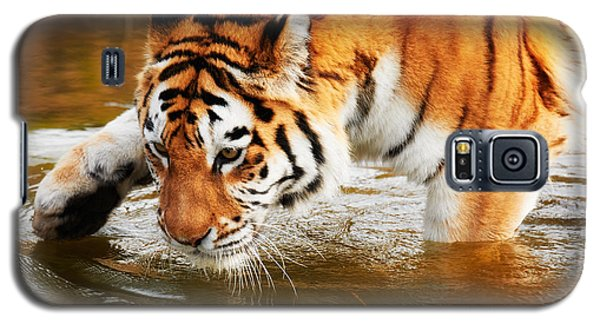 Galaxy S5 Case featuring the photograph Bathing Siberian Tiger by Nick  Biemans