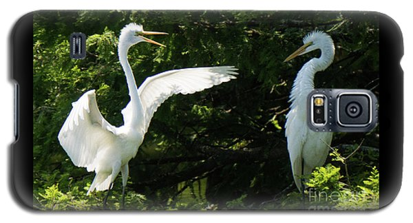 Battle Of The Egrets Galaxy S5 Case