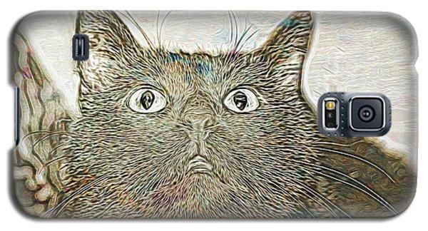 Bb Gazing Galaxy S5 Case