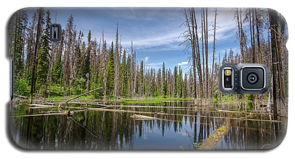 Bc Forest Lake Galaxy S5 Case
