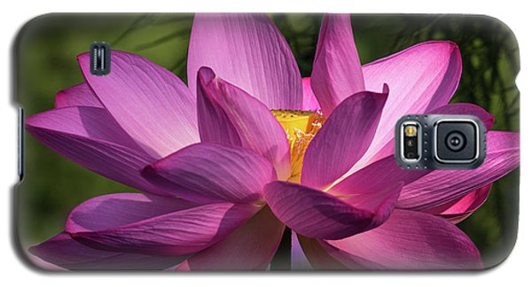 Be Like The Lotus Galaxy S5 Case