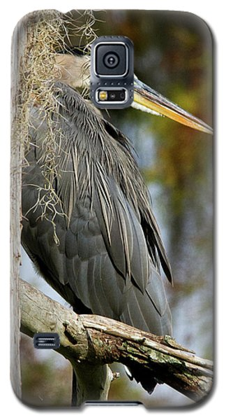 Be The Tree Galaxy S5 Case