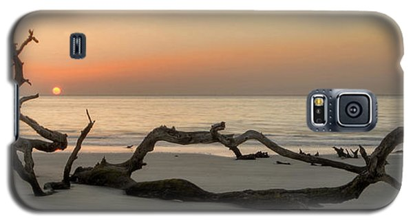 Beach Art Cropped Galaxy S5 Case