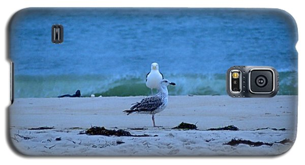 Galaxy S5 Case featuring the photograph Beach Birds by  Newwwman