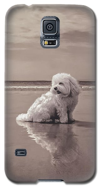 Beach Bum Galaxy S5 Case