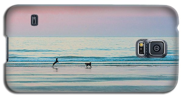 Beach Dogs Playing At Dawn Galaxy S5 Case