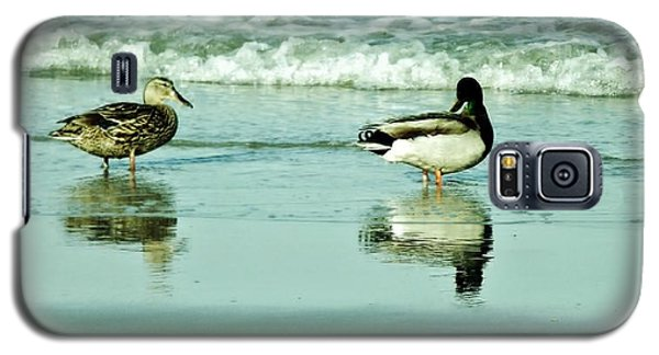 Beach Ducks Galaxy S5 Case by John Wartman