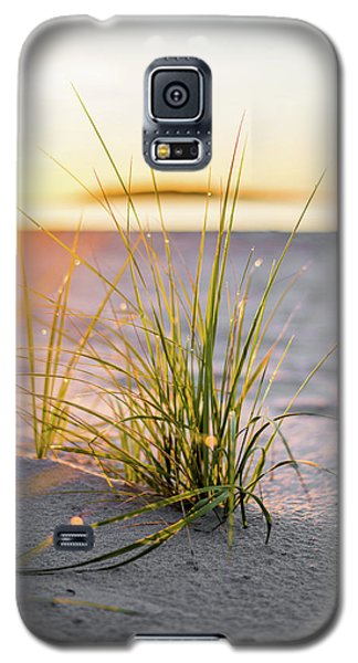 Beach Grass Galaxy S5 Case