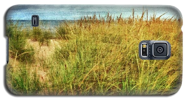 Galaxy S5 Case featuring the digital art Beach Grass Path - Painterly by Michelle Calkins