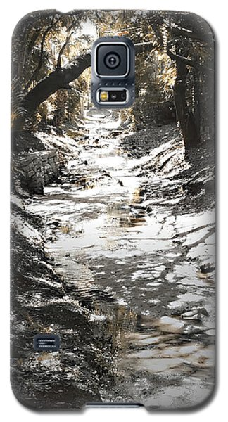 Beach Park Storm Drain Galaxy S5 Case