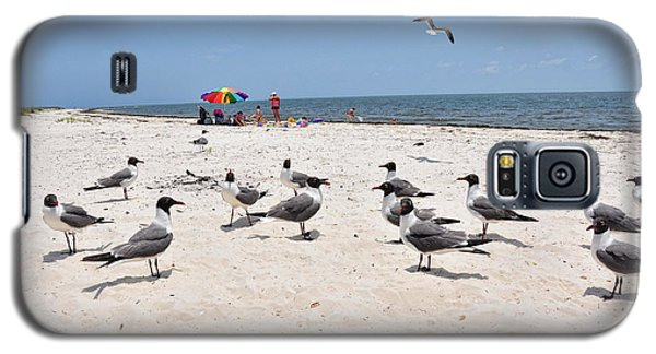 Galaxy S5 Case featuring the photograph Beach Party by Jan Amiss Photography