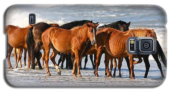 Beach Ponies Galaxy S5 Case