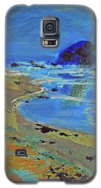 Beach Solitude Galaxy S5 Case