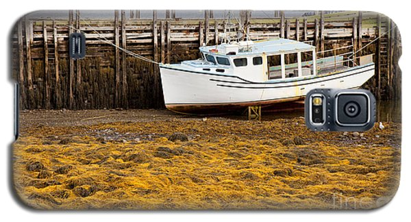 Beached Boat During Low Tide In Nova Scotia Canada Galaxy S5 Case